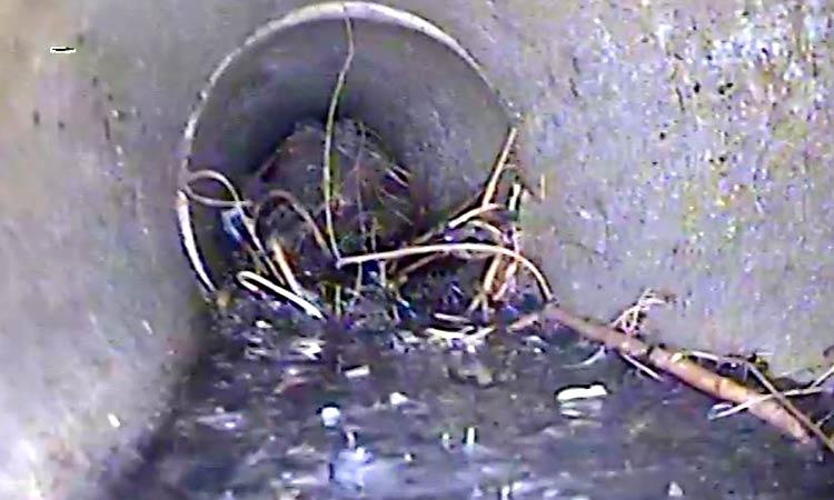 CCTV Cam Drainage Still