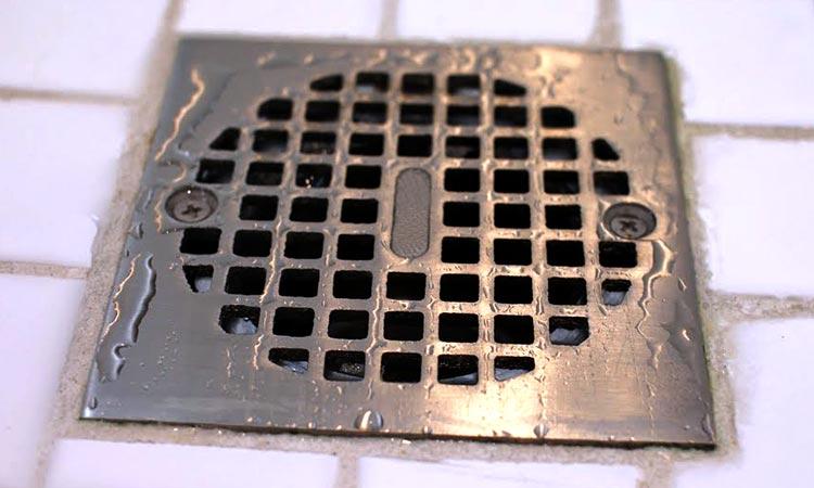 Shower Drain
